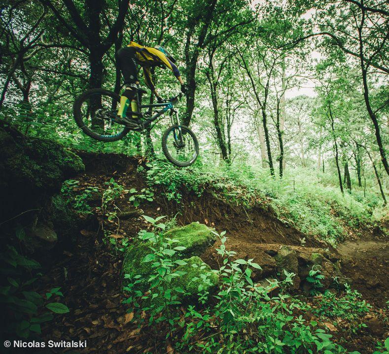 http://www.pedal.com.br/fotos/noticias/4931002f.jpg