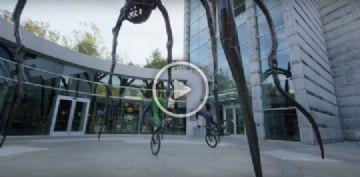 Vídeo - Danny MacAskill e Hans Rey pedalam juntos